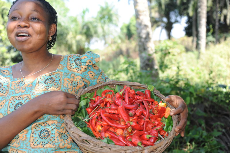 Ripples Farm - Woman With Peppers
